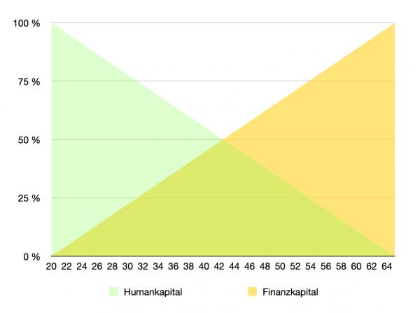 Grafik Human- und Finanzkapital