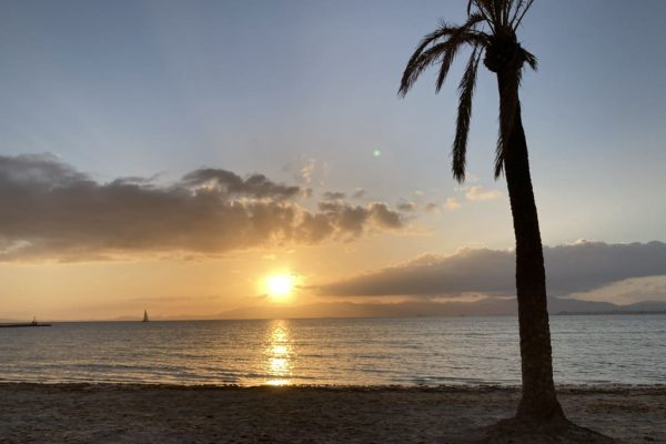 Reisen-Lebenshaltungskosten-Mallorca
